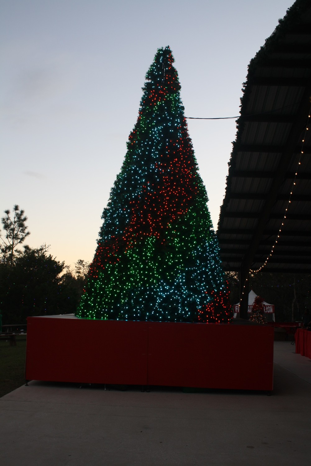 The Village features a Christmas tree that performs every hour.