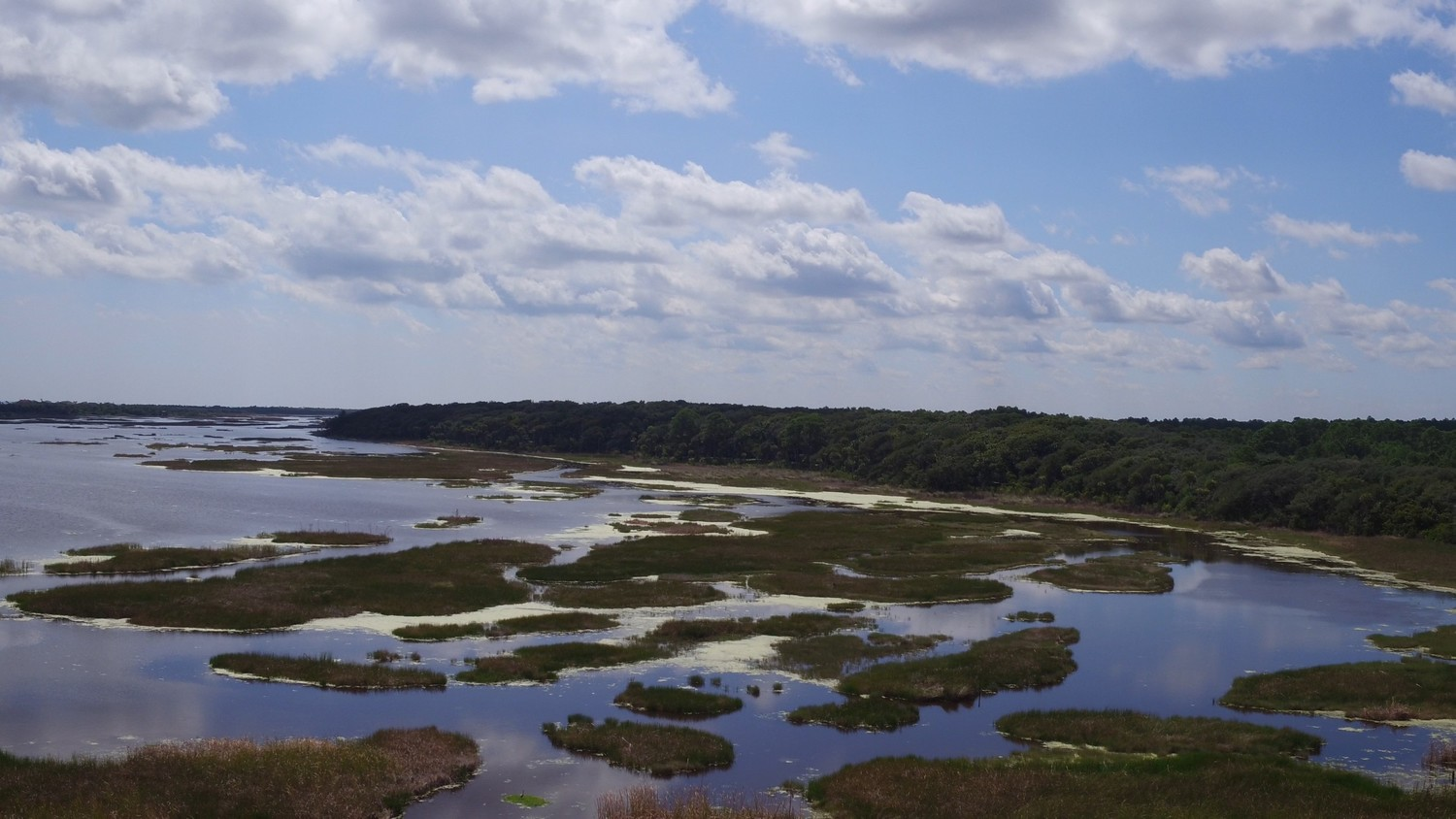 The Outpost property is located at the end of Neck Road and adjacent to the Guana Tolomato Matanzas National Estuarine Research Reserve.