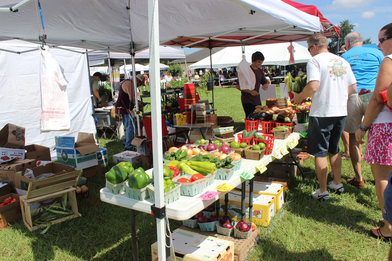 Vendors offer fresh vegetables at the Farmers Market.
