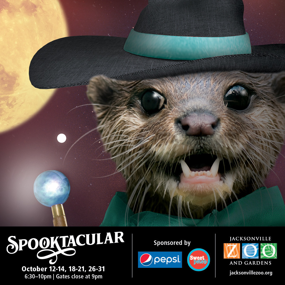 Spooktacular Returning To Jacksonville Zoo And Gardens