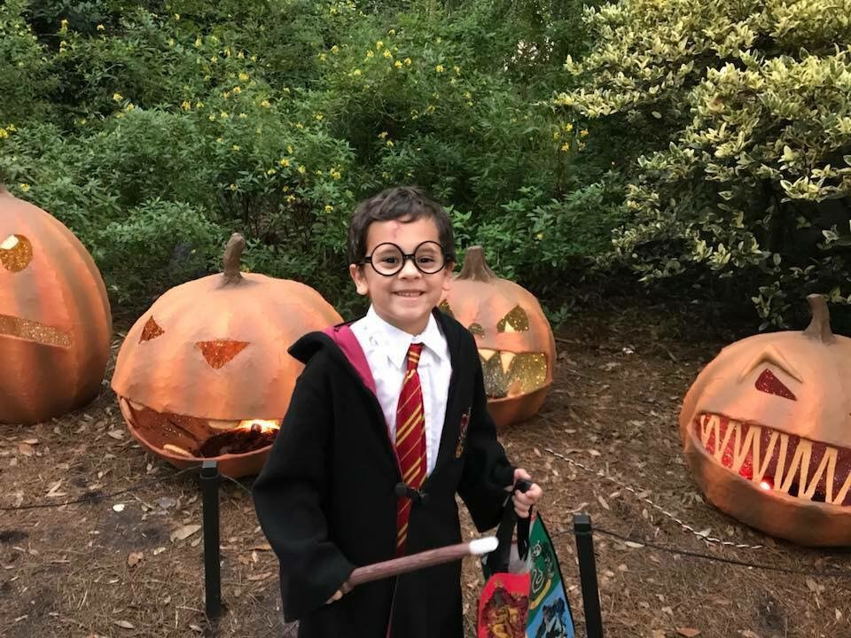 Jacksonville Zoo Prices Halloween 2020 Spooktacular returning to Jacksonville Zoo and Gardens   The Ponte