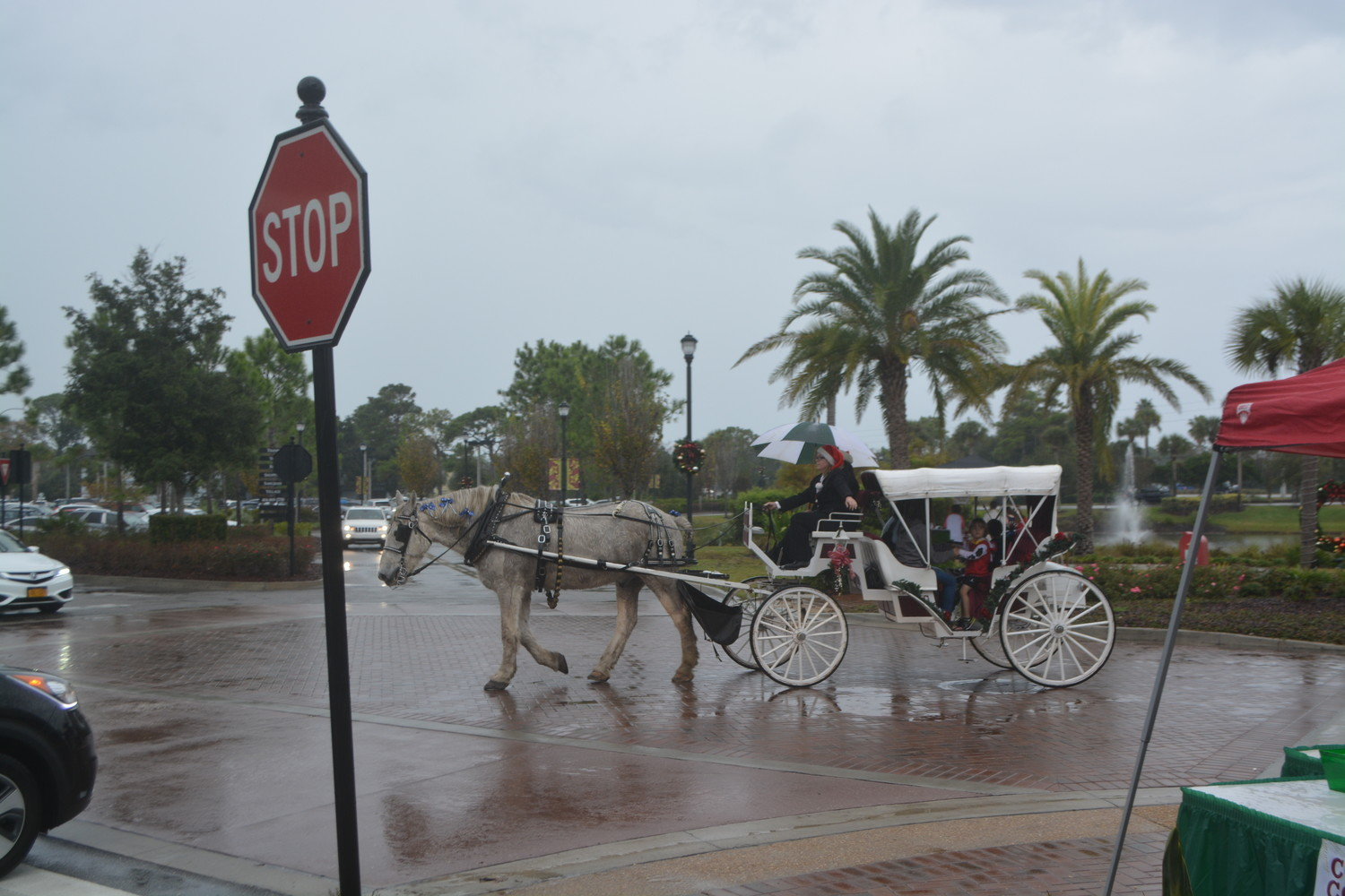 Attendees enjoy a carriage ride around Sawgrass Village.