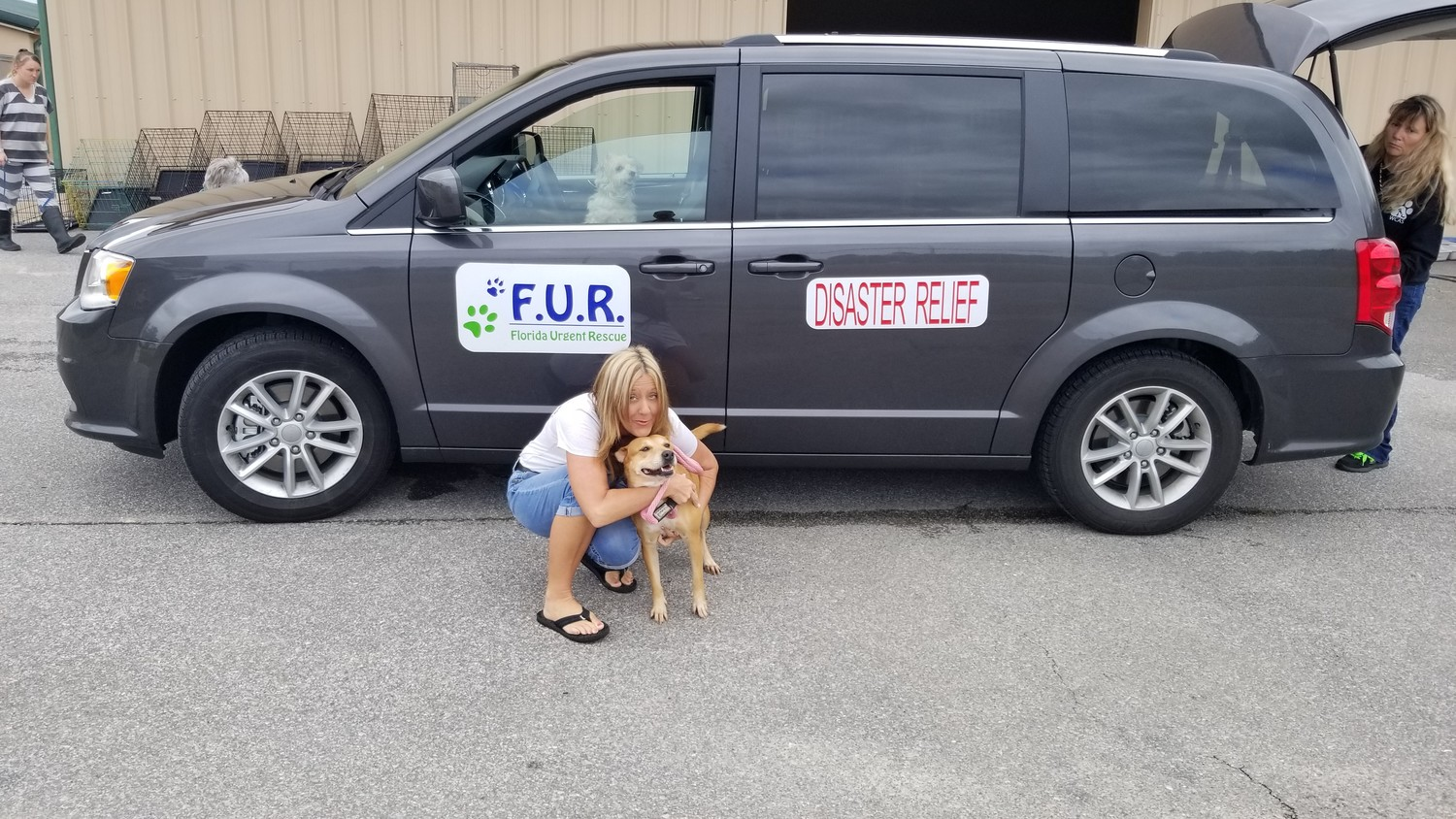 Another dog rescued from Hurricane Michael is taken in by the F.U.R. team.
