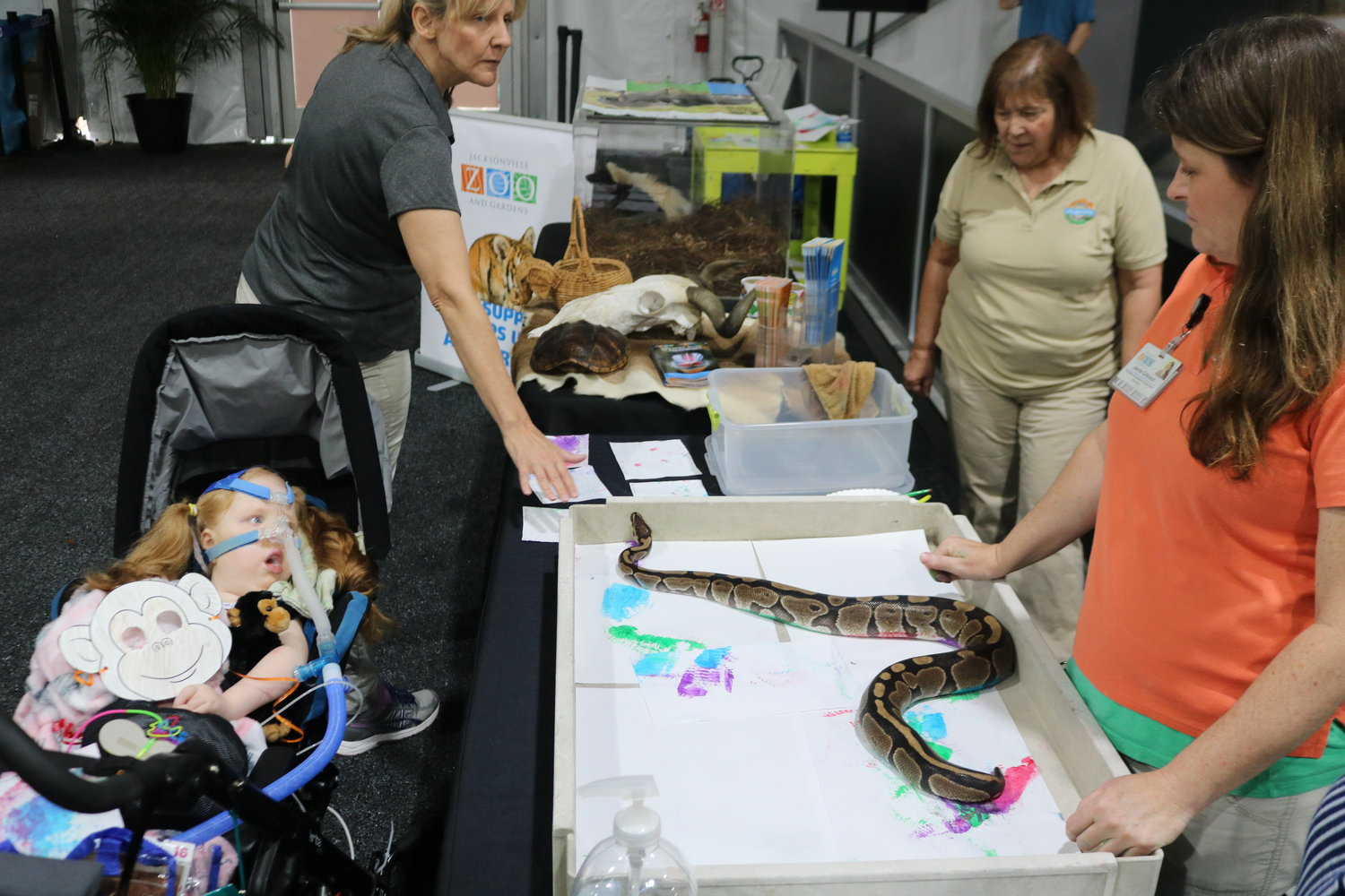 A snake from Jacksonville Zoo shows its artistic side.