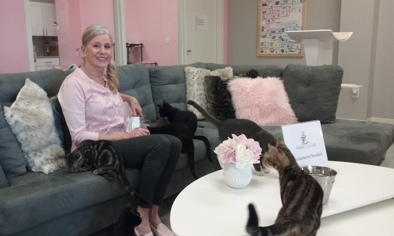 Carla Forrest has combined her passion for rescuing cats with her entrepreneurial spirit to create The Frisky Cat Café, a place where coffee-lovers can meet cats and kittens available for adoption.