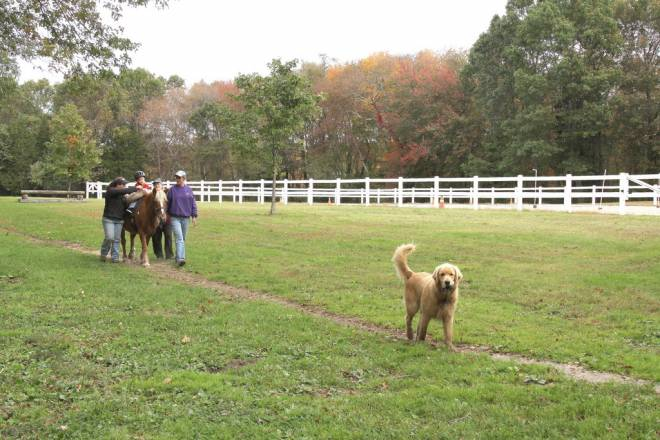 Greenlock Therapeutic Riding Center in Rehoboth