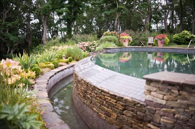 Jackie Savoie's Bristol garden