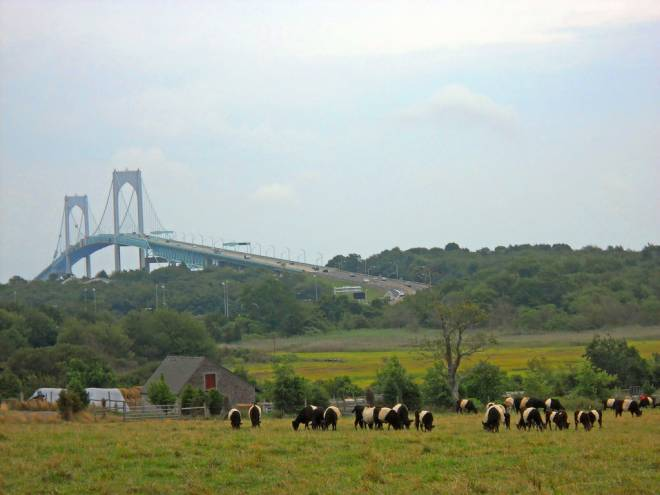View of Neale Farm and Newport Bridge from North Road