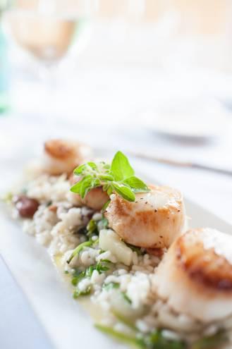 Canestrelli Tartufati: Pan-seared sea scallops with fava beans over braised citrus fennel risotto