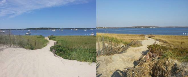 A trail at Napatree Point in Watch Hill before Hurricane Sandy (left), the eroded and damaged trail after Hurricane Sandy (right)