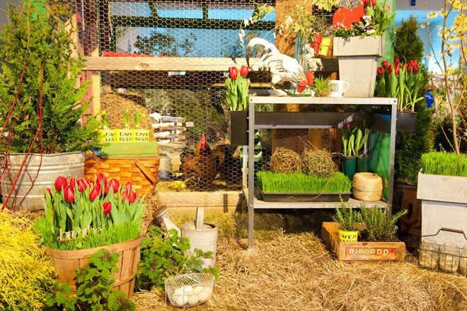 Inject some sunshine into your life at the Rhode Island Spring Flower and Garden Show