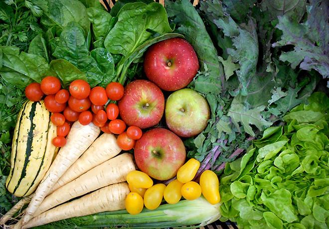 Farm Fresh RI's Veggie Boxes bring the farmers' market to you