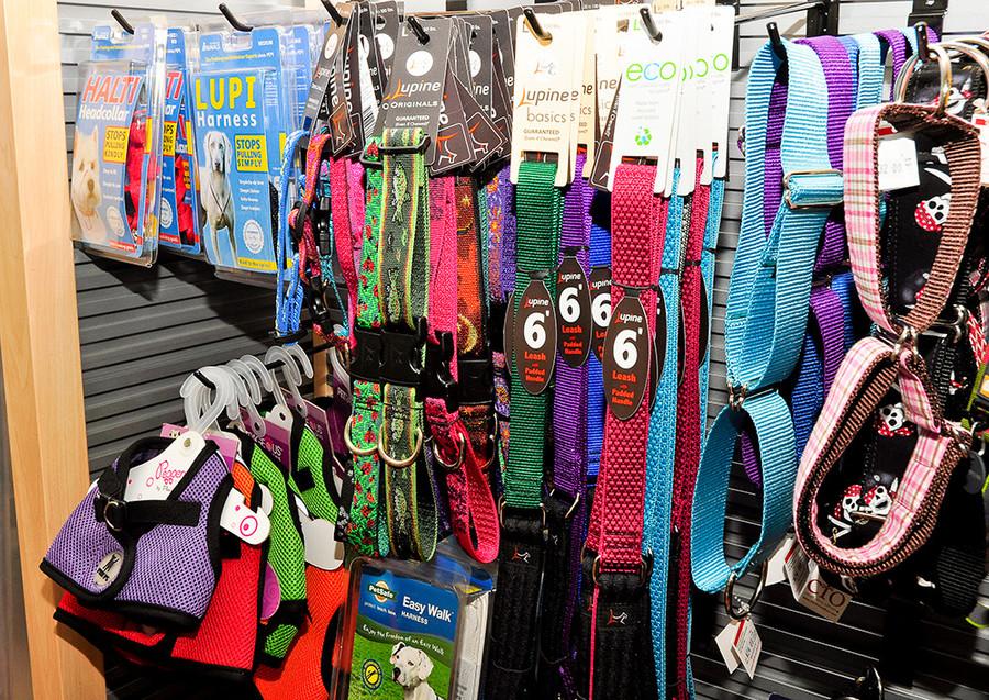 Collars $11.99-50; Harnesses $20-40