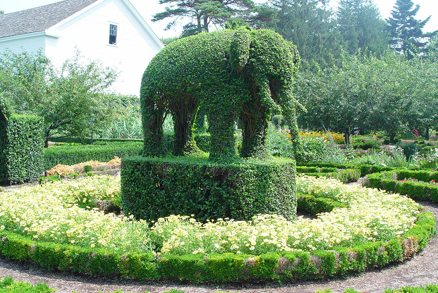 Keep an eye out for all kinds of creatures at the Green Animals Topiary Garden in Portsmouth