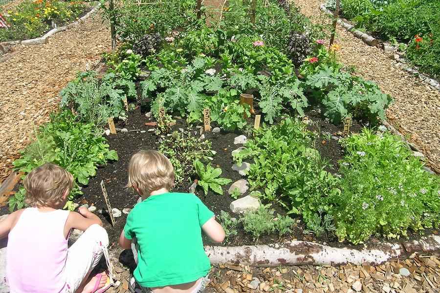 Session Street Community Garden