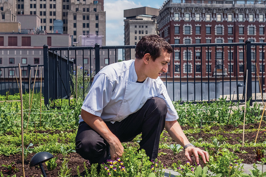 Chef Matthew Varga at work in Gracie's downtown rooftop garden