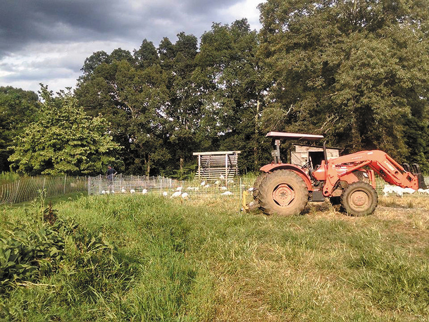 Pat's Pastured in East Greenwich