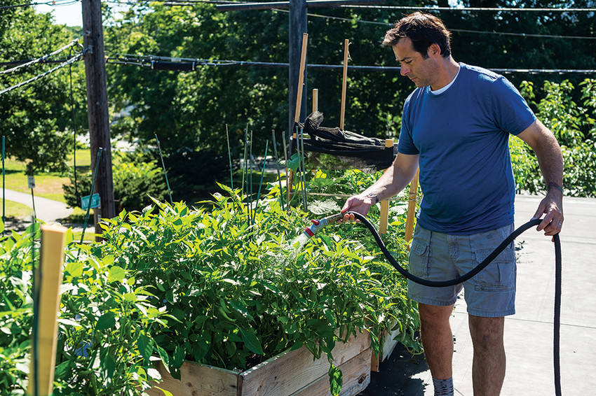 Chef Matthew Gennuso tends his rooftop garden at Chez Pascal in Providence