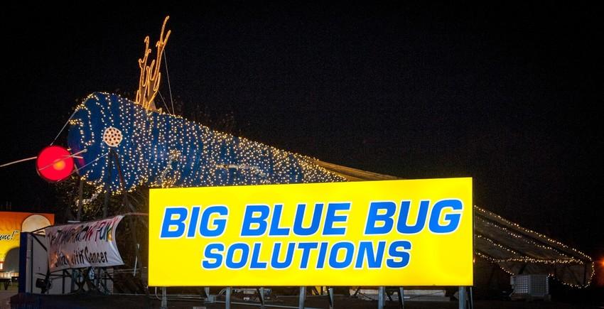 Big Blue Bug lighting