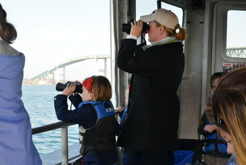 See RI's State Marine Mammal in their natural habitat while cruising through historic Newport Harbor with Save The Bay's seal tours, running now through April 28th