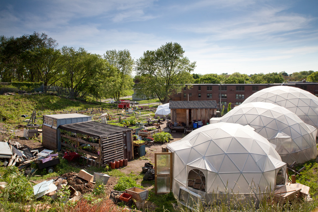 Approximately 10,000 seedlings are growing within the farm's geodesic domes