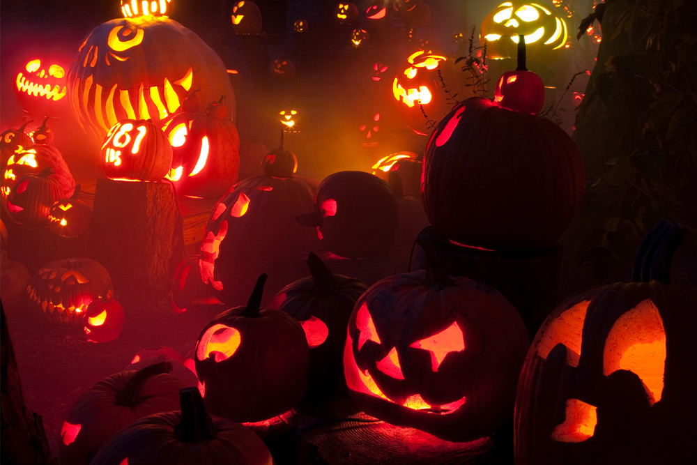 See over 5,000 carved pumpkins at Roger Williams Park Zoo's annual Jack-O-Lantern Spectacular all through October