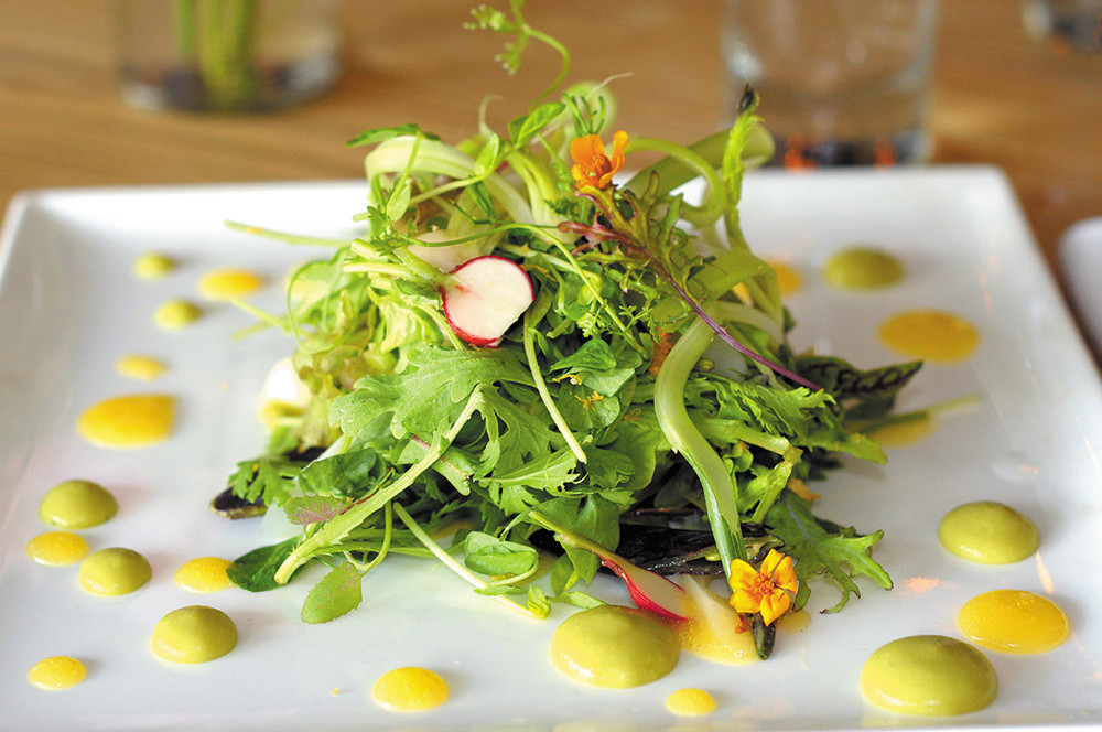 Summer salad of baby greens and vegetables