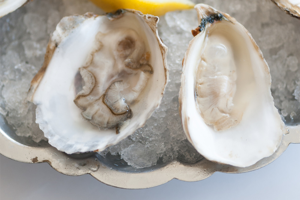 Follow the RI Oyster Trail straight to Greenwich Bay Oyster Bar