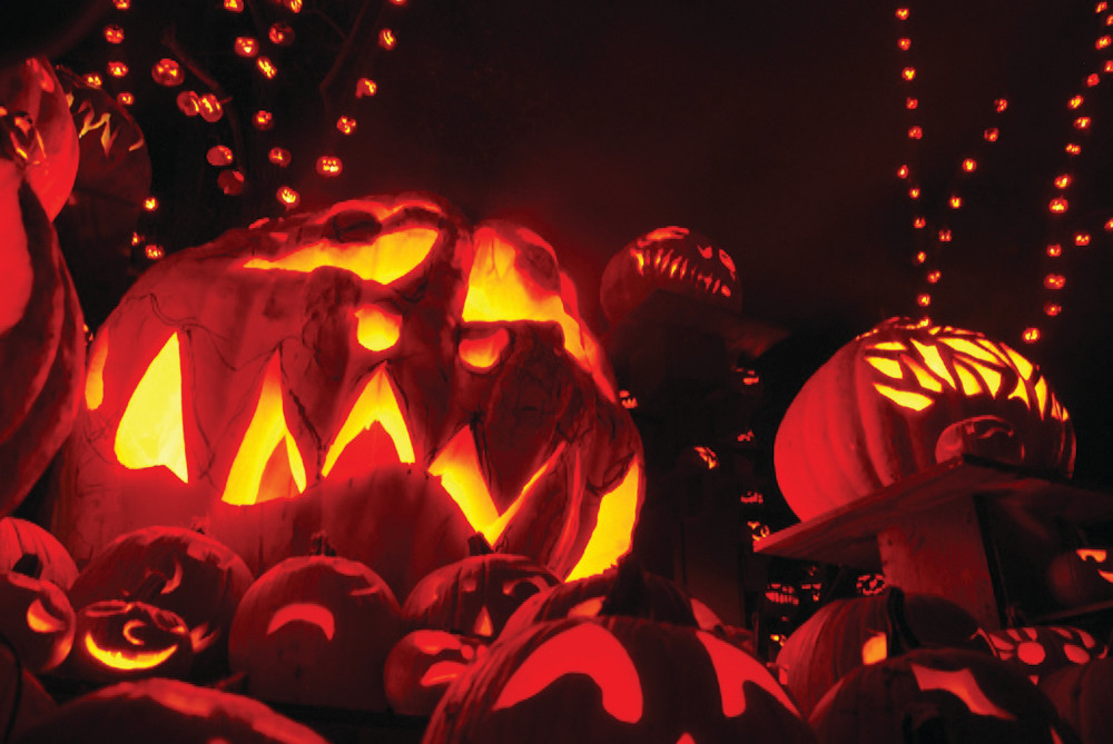 Take a haunted stroll through the pumpkin patch at Roger WIlliams Park Zoo's The Jack-O-Lantern Spectacular