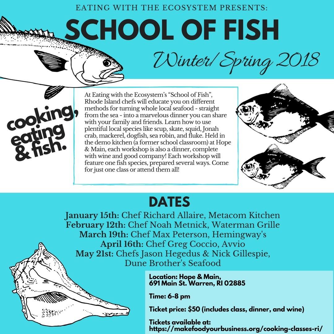 School of Fish   The Bay   thebaymagazine.com