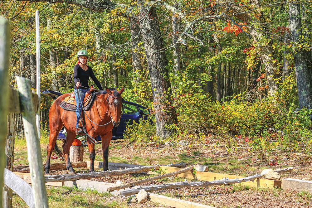 Stepping Stone Ranch in West Greenwich