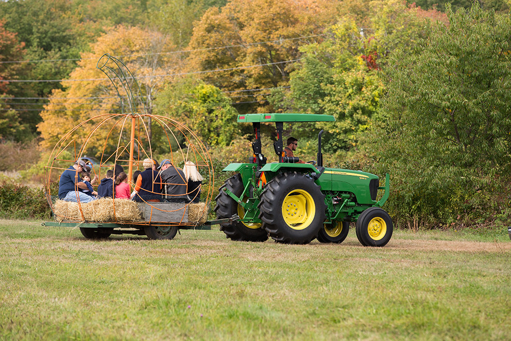 In addition to the pumpkin weigh off, Frerichs Farm's Pumpkin Palooza features pumpkin painting and harvest hay rides