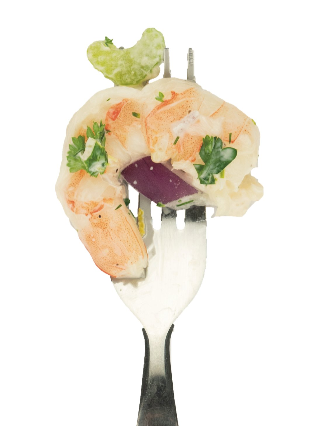 Yogurt Dill Shrimp Salad: herbed salad with red onions and celery.