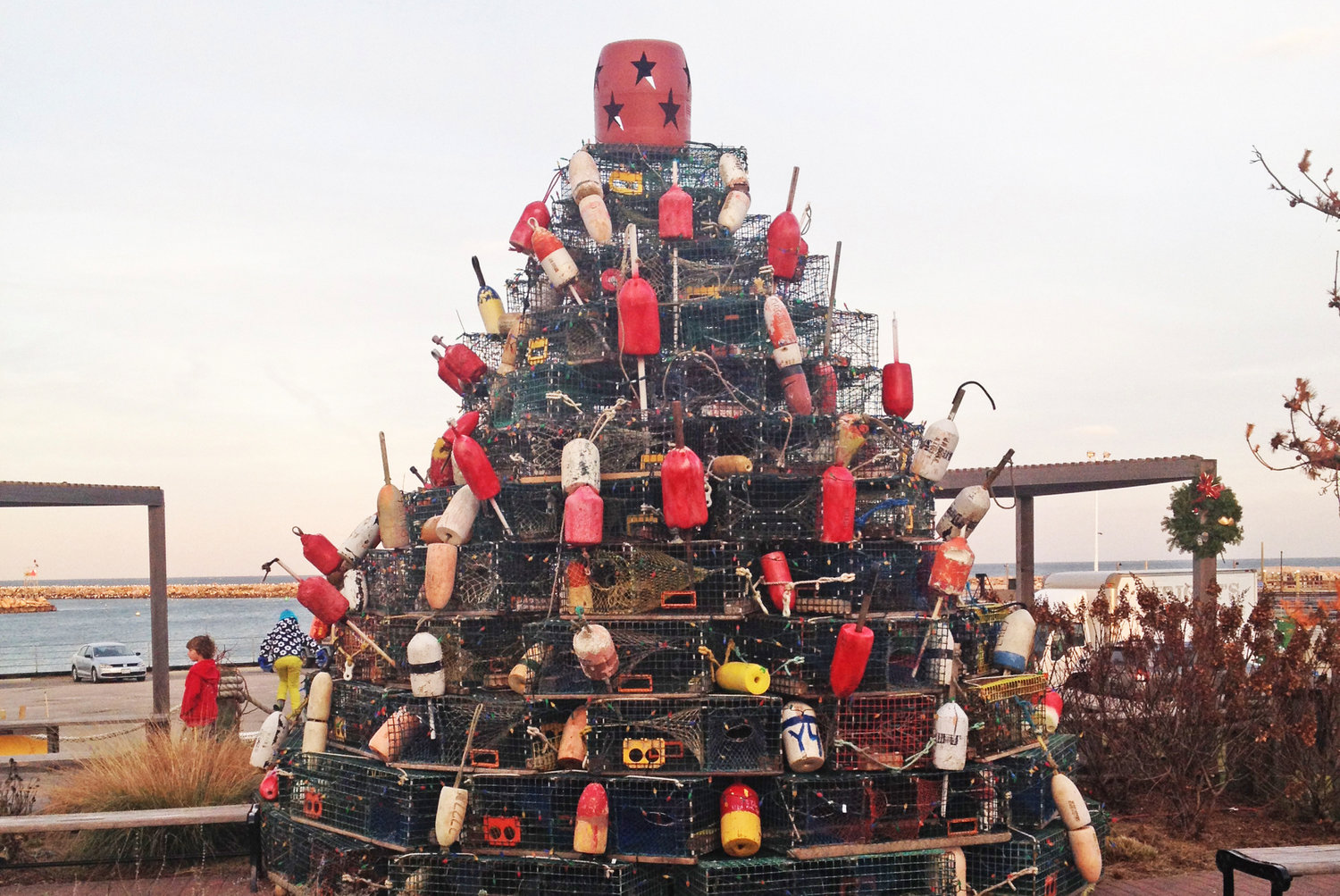 Lobster Trap Tree on Block Island