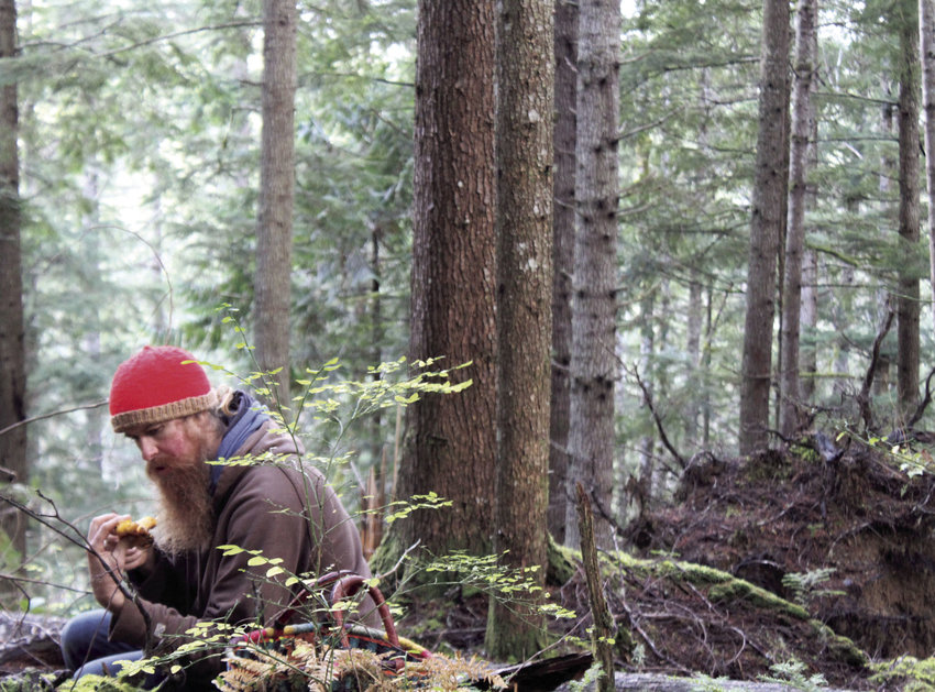 Josh Sasser, of Quilcene, always has been interested in wild food harvesting. He enjoys being able to go out in nature to find food for his family, his friends and his community.