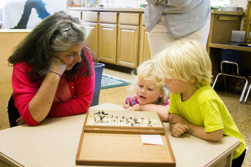 From left, Swan School preschool and Spanish teacher Loida Robles shows a display of insects to Flora Reed and Ozric Leavens Sept. 6.