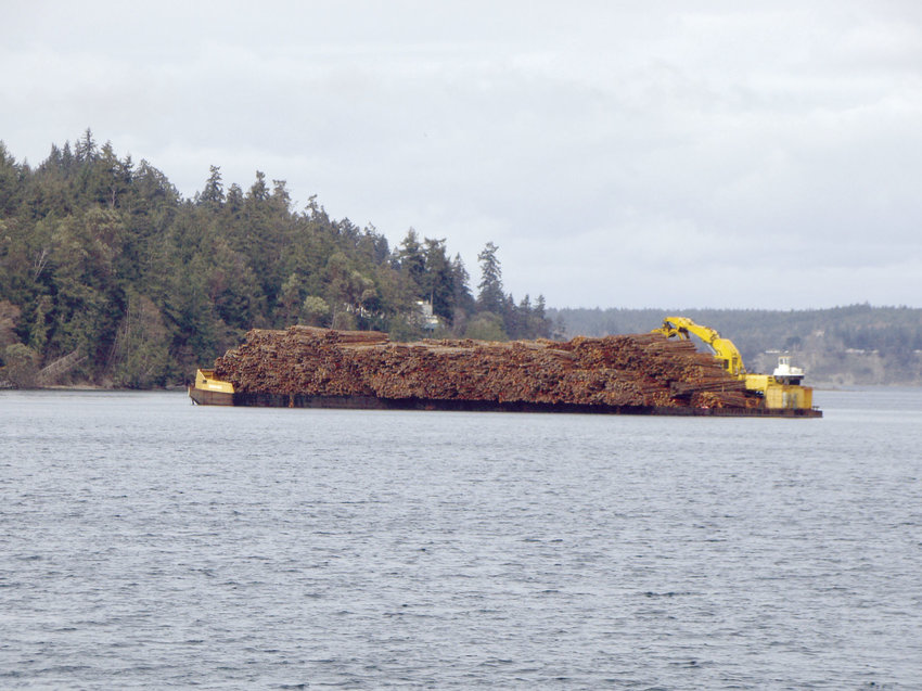 Boyer Towing's shipment of 1 million board feet, or approximately 7,000 tons, of logs from Vancouver Island to Coos Bay, Oregon, was forced to make a stop in Discovery Bay, where it spent a week. Photos by Kathy Case