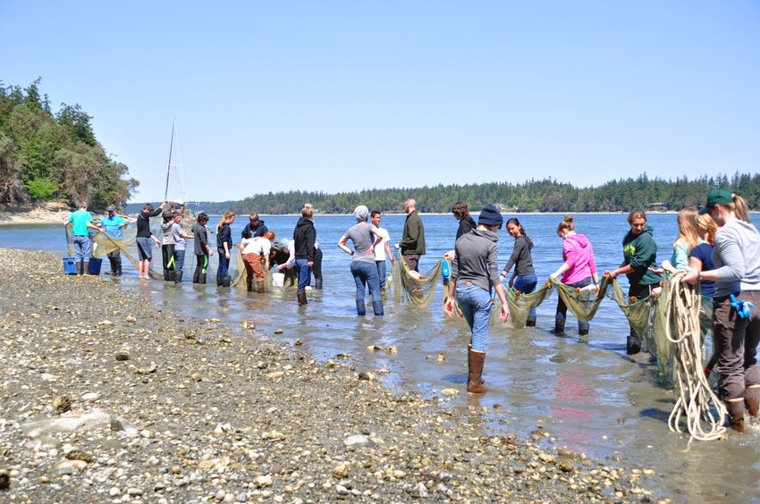 Blue Heron Middle School students are set to take part in a fish seine event April 27-28 at Naval Magazine Indian Island. Courtesy photo