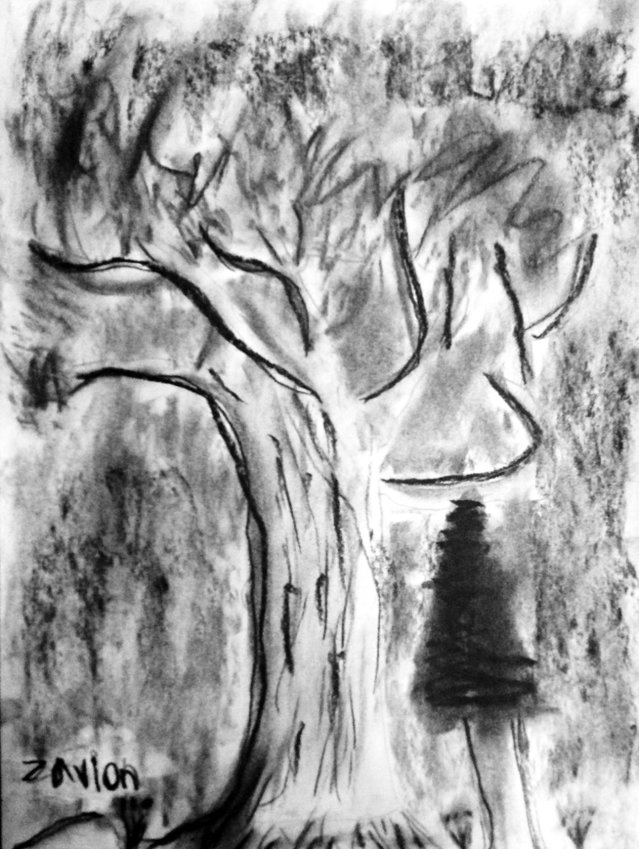 This charcoal drawing by Zavion, a third-grader at Grant Street Elementary School, is one of more than 3,000 pieces of student art to be on display at the school from 6 to 7:30 p.m., Friday, April 21. Admission to the exhibit is free; donations are welcome. The event is hosted by the Grant Street PTA. Organized by art teacher Wanda Leclerc, the show also includes several student art projects that were done in collaboration with local artists from the community. Many of the projects align with the Port Townsend School District's Maritime Discovery Schools Initiative, with themes relating to place-based education. The school is located at 1637 Grant St.