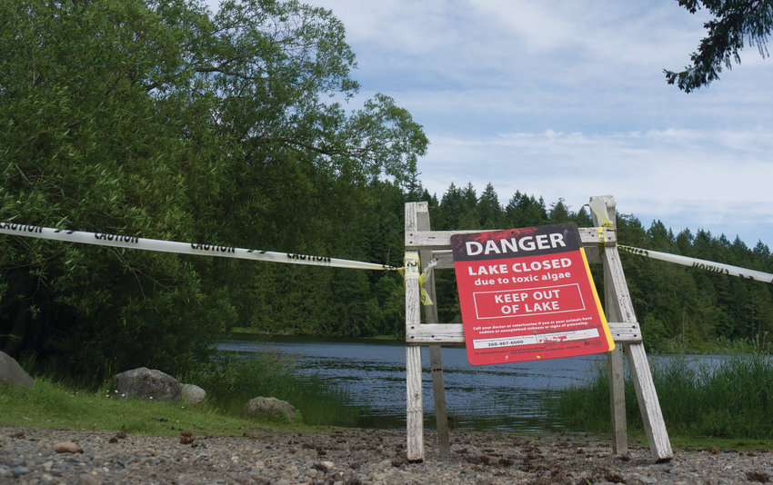 Anderson Lake has a history of toxicity. The state mandates these signs to be displayed on lakes closed due to toxic algae blooms.