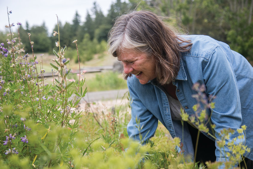 """Lisa Niehaus weeds around the flowering purple lupine at the native plant garden at HJ Carroll Park. """"I get so much comfort and zen from the work I do outside gardening,"""" Niehaus said."""