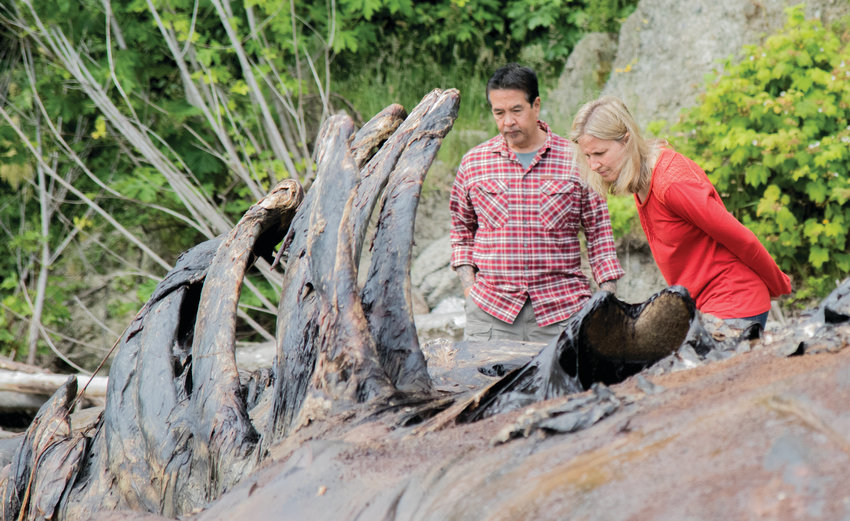 """""""She's all about the maggots,"""" Mario Rivera said of Stefanie Worwag while they inspected the recent changes to the decomposing gray whale on their beach in Port Hadlock. The couple volunteered to house the whale when marine mammal organizations couldn't find any other place to put it."""