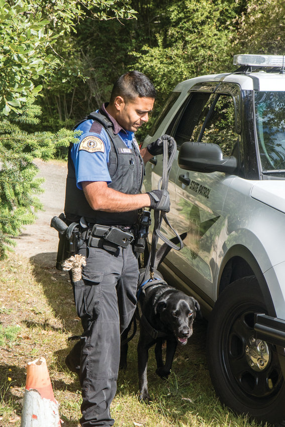 Washington State Patrol Trooper Alishan Nomani and his 6-year-old K-9 partner, Buster, assist Port Townsend Police Department in searching for the .38 caliber revolver that was used in an attempted murder on June 28.