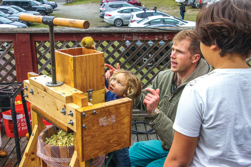 """Kohta, a 3-year-old boy from Seattle, loads the hopper that feeds apples and pears into the scatter (grinder) on a small cider press operated by Chauncey Locklear at the Olympic Peninsula Apple & Cider Festival """"Cider Saloon"""" event Oct. 12 at the Palindrome events center on Jacob Miller Road in Port Townsend."""