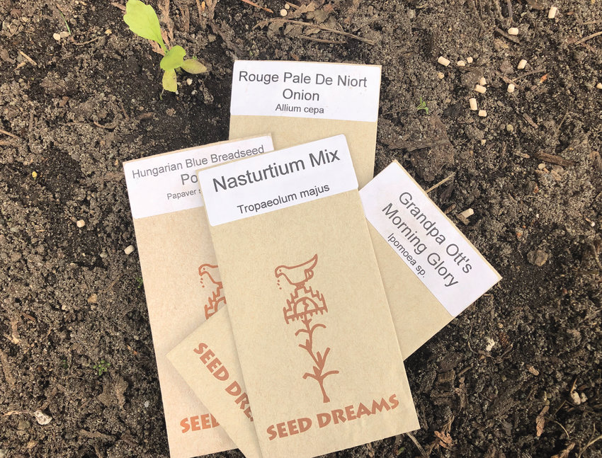 Seed Dreams seed packets, grown locally by Tessa Gowans, are available at local stores, such as the Port Townsend Food Co-op and the Chimacum Corner Farmstand.