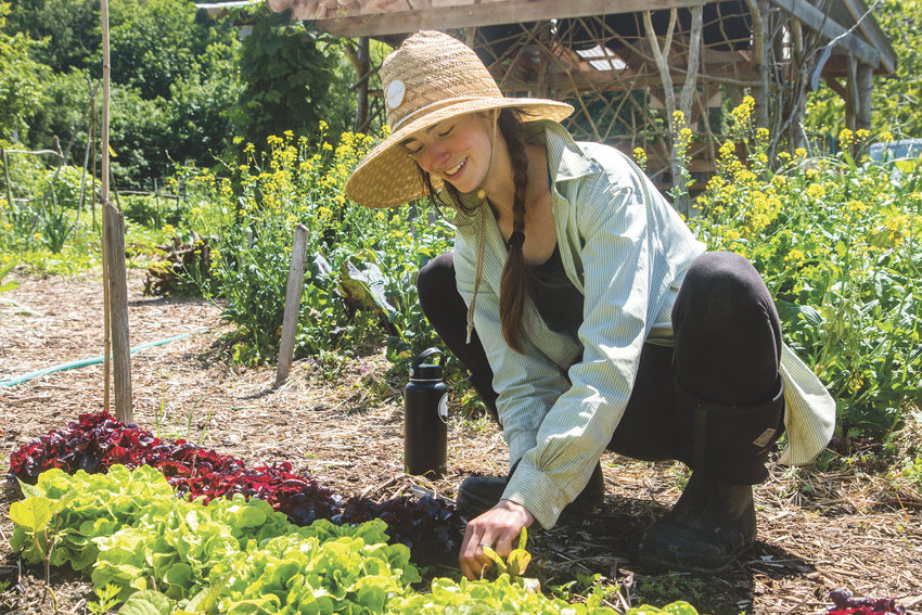 Jules Spruill-Smith pulls weeds from one of the vegetable beds she and her husband Cass Curl are cultivating at Compass Rose Farms.