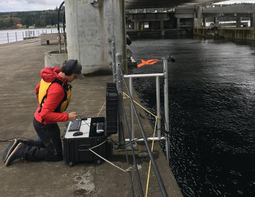 Hans Daubenberger using an acoustic image device to collect data in bridge pools