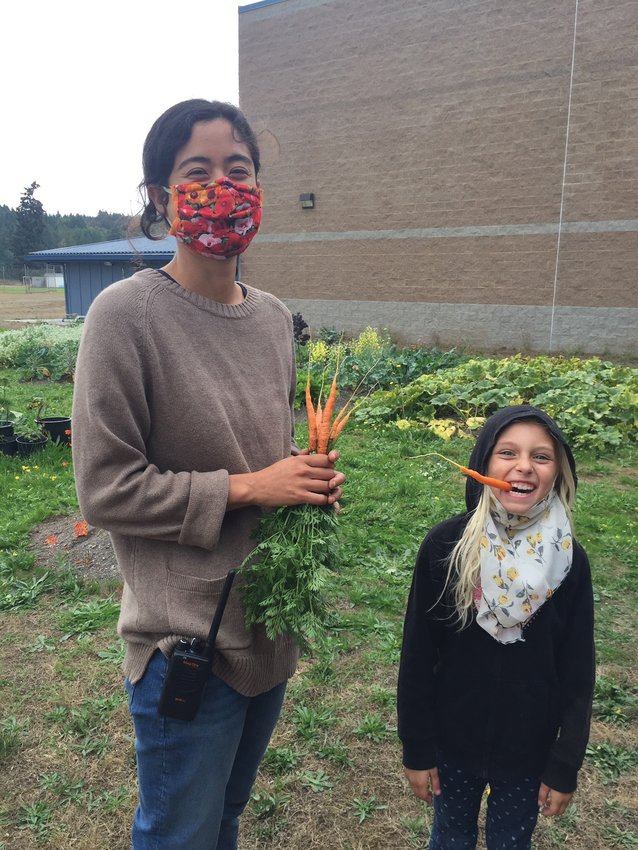 Corey Chin, garden coordinator of the Community Wellness Project, harvests carrots in the Chimacum Elementary garden with help from Bristol Lunde.