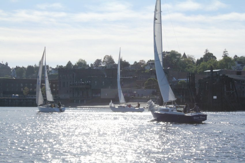 A steady breeze carries racers along the Port Townsend Waterfront prior to the start of Race 6 in the Port Townsend Sailing Association's Whitecap Series.