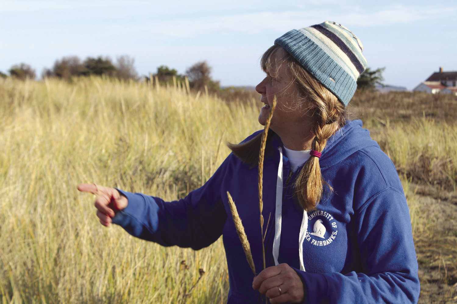 Sharon Schlentner of the Washington Native Plant Society demonstrated how to tell the difference between native and non-native beach grass at a work party Oct. 27 at Fort Worden.
